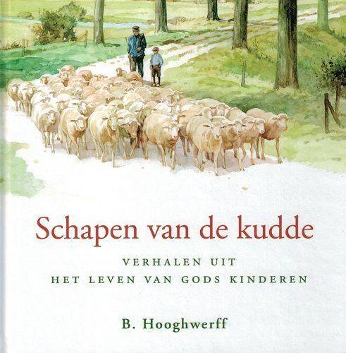 1380705590-schapen-van-de-kudde